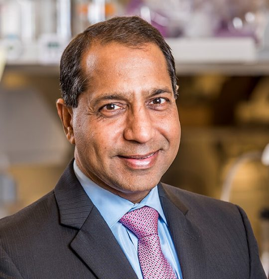 Portrait of Anil Goyal, Board Member of Enzerna Biosciences Inc.