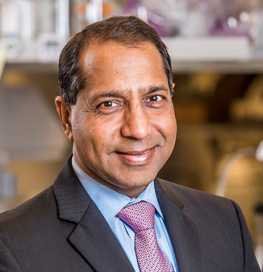 Portrait of Anil Goyal, Board Member of Enzerna Biosciences Inc.